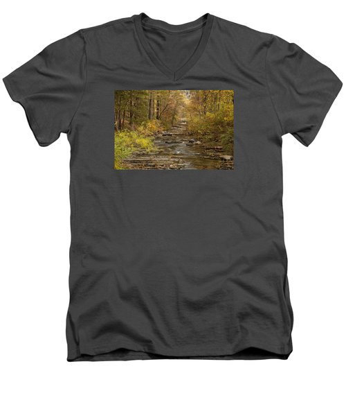 Fork River Ablaze In Color Men's V-Neck T-Shirt