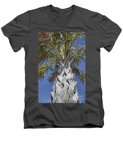 Fortified Foundation Palm Men's V-Neck T-Shirt