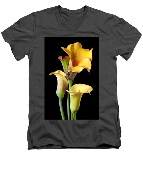 Four Calla Lilies Men's V-Neck T-Shirt by Garry Gay