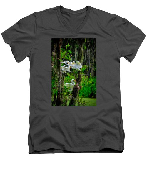 Four Egrets In Tree Men's V-Neck T-Shirt