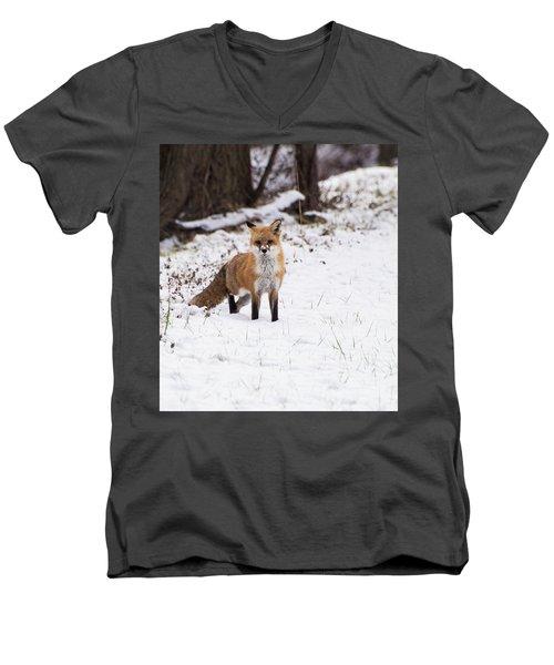 Fox 4 Men's V-Neck T-Shirt
