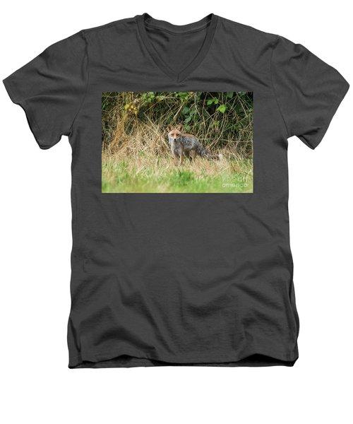 Fox In The Woods Men's V-Neck T-Shirt