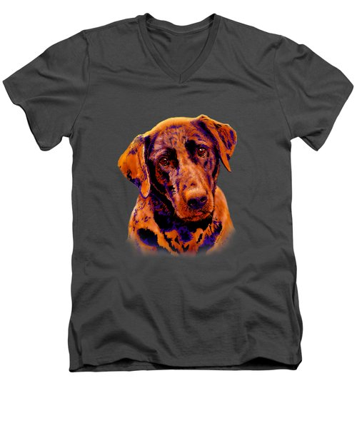 Fox Red Labrador Painting II Men's V-Neck T-Shirt