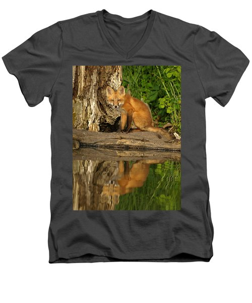 Fox Reflection Men's V-Neck T-Shirt