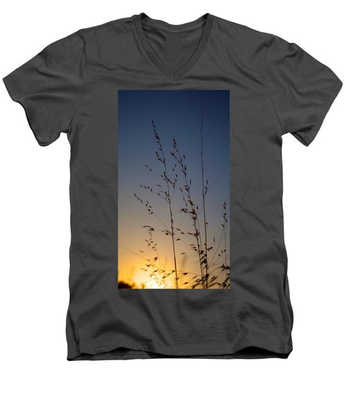 Foxtail Sunset Men's V-Neck T-Shirt