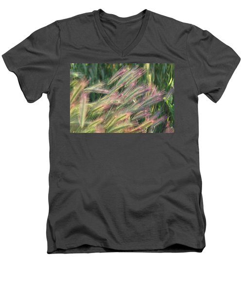 Foxtails In Spring Men's V-Neck T-Shirt by Michele Myers