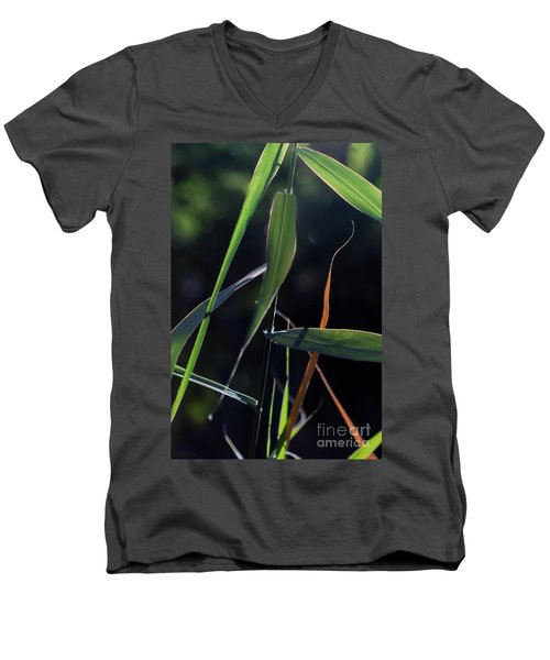 Men's V-Neck T-Shirt featuring the photograph Fragment by Linda Lees
