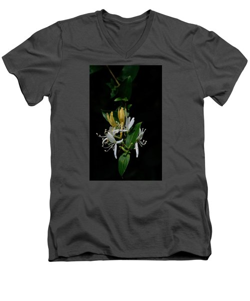 Men's V-Neck T-Shirt featuring the photograph Fragrant Honeysuckle by Karen Harrison