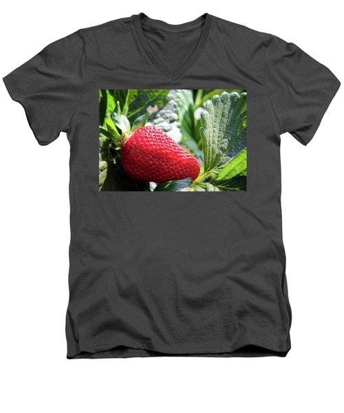 Fraise Men's V-Neck T-Shirt