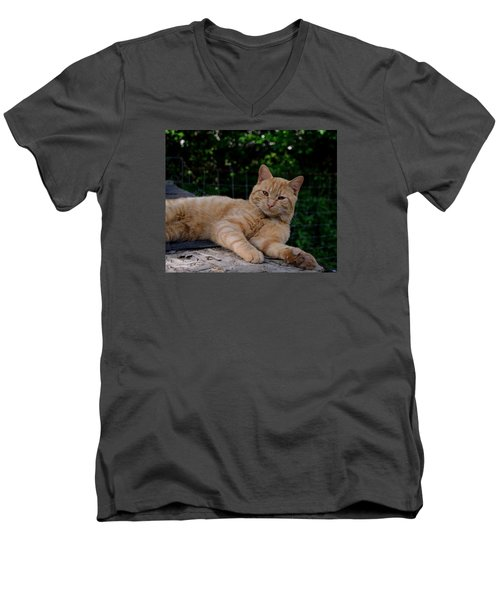 Men's V-Neck T-Shirt featuring the photograph Franklin by Karen Harrison