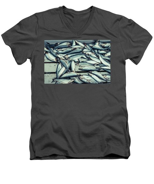 Men's V-Neck T-Shirt featuring the photograph Fresh Caught Herring Fish by Edward Fielding