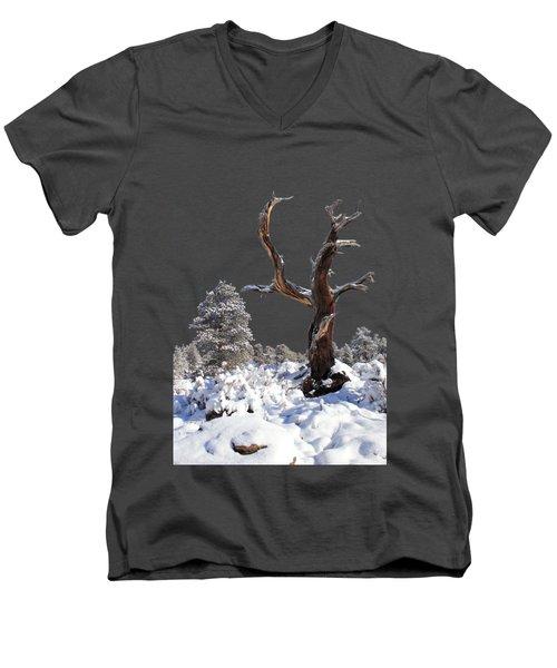 Fresh Snow Men's V-Neck T-Shirt