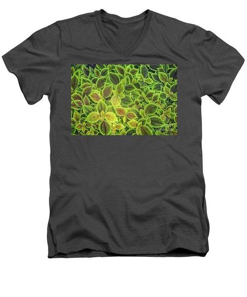 Friendship Plant Men's V-Neck T-Shirt