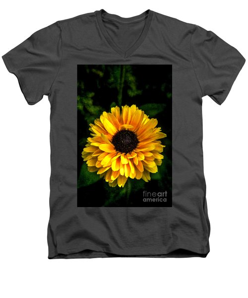 Men's V-Neck T-Shirt featuring the photograph Frilly Rudi by Judy Wolinsky