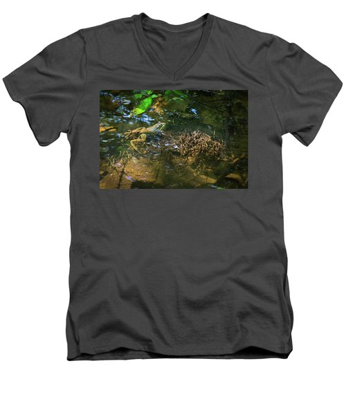 Men's V-Neck T-Shirt featuring the photograph Frog Days Of Summer by Bill Pevlor