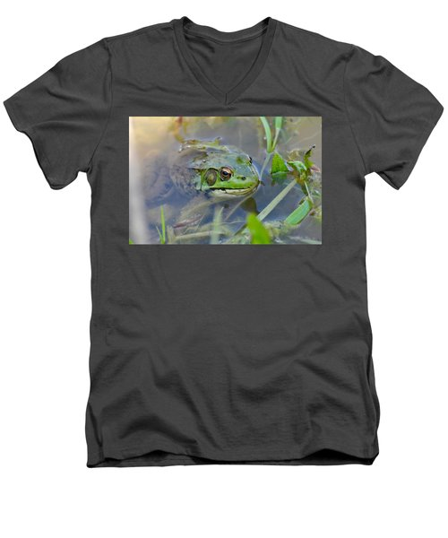 Frog Hiding In The Pond Men's V-Neck T-Shirt by Lisa DiFruscio