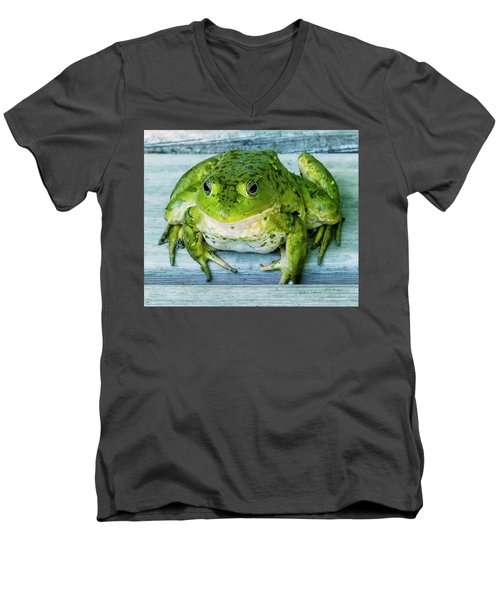Frog Portrait Men's V-Neck T-Shirt