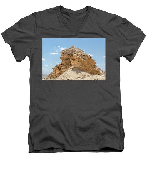 Frog Rock Men's V-Neck T-Shirt