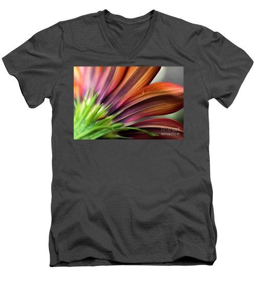 From Behind Men's V-Neck T-Shirt