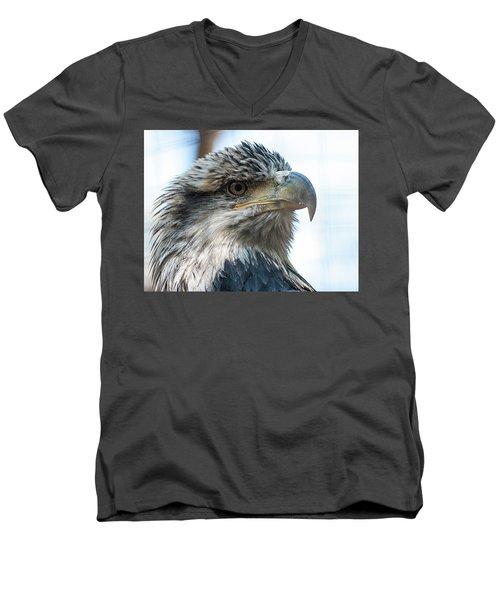 From The Bird's Eye Men's V-Neck T-Shirt