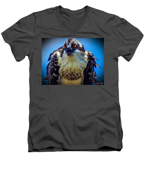 From The Series The Osprey Number 3 Men's V-Neck T-Shirt