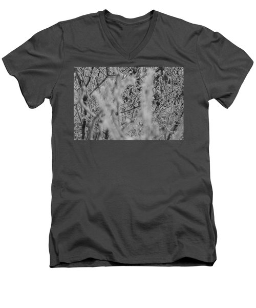 Frost 2 Men's V-Neck T-Shirt by Antonio Romero