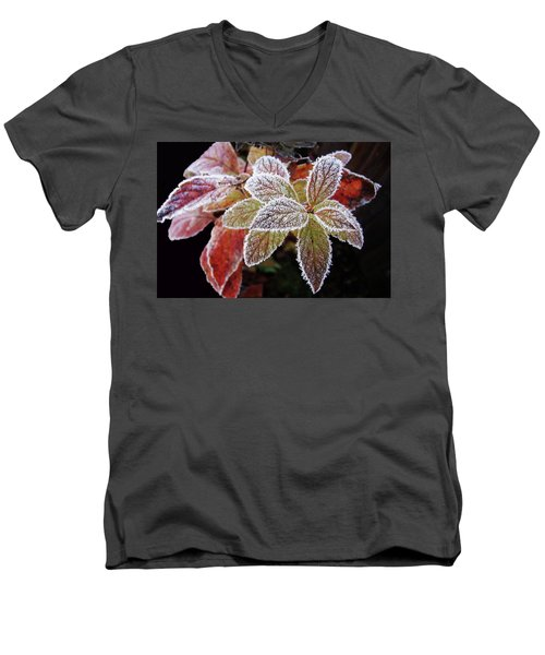 Frost Cluster Men's V-Neck T-Shirt by Betsy Zimmerli