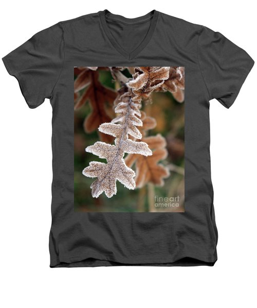 Frost Covered Oak Leaf Men's V-Neck T-Shirt