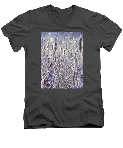 Frosted Cattails In The Morning Light Men's V-Neck T-Shirt by Joy Nichols
