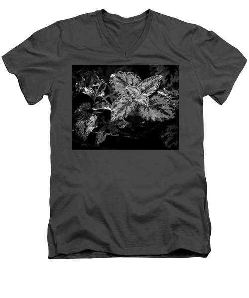 Frosted Hosta Men's V-Neck T-Shirt