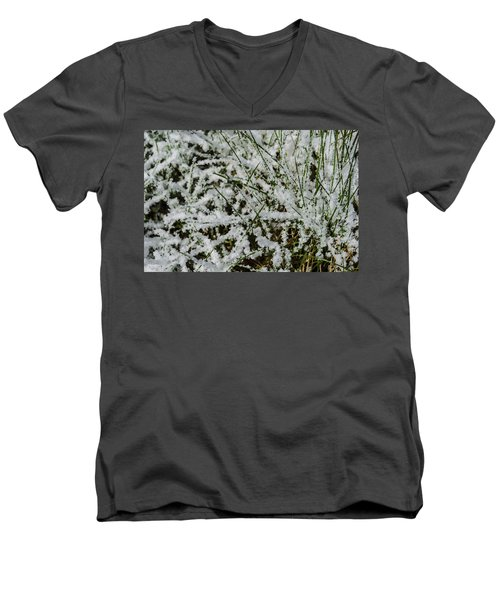 Frosty Grass Men's V-Neck T-Shirt by Deborah Smolinske