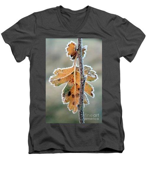 Frosty Leaf Men's V-Neck T-Shirt