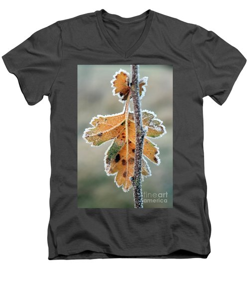 Frosty Leaf Men's V-Neck T-Shirt