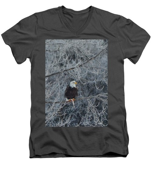 Frosty Morning Eagle Men's V-Neck T-Shirt