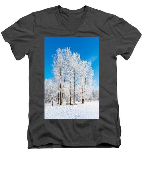 Frosty Wonderland Men's V-Neck T-Shirt