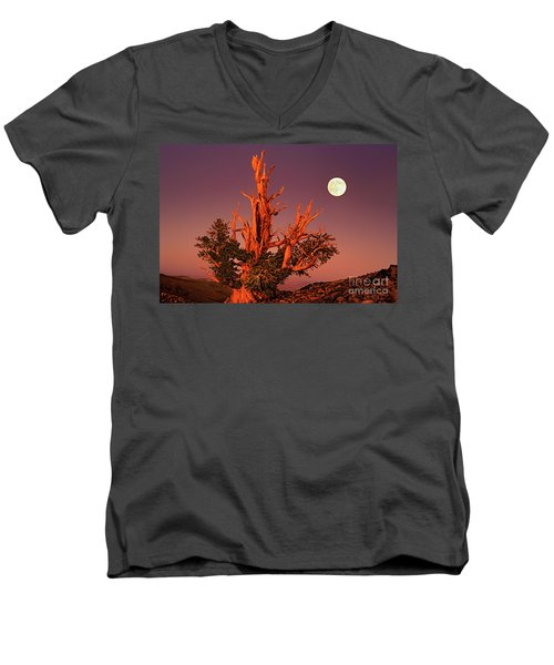 Full Moon Behind Ancient Bristlecone Pine White Mountains California Men's V-Neck T-Shirt by Dave Welling