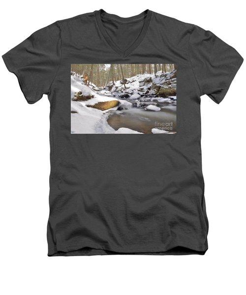 Full Scene  Winter Pool Men's V-Neck T-Shirt