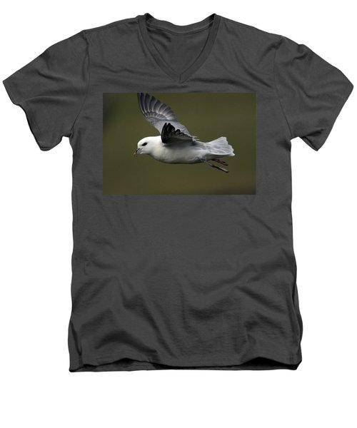 Fulmar In Flight Men's V-Neck T-Shirt