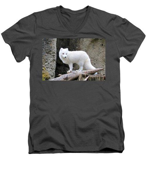Furry Arctic Fox  Men's V-Neck T-Shirt by Athena Mckinzie