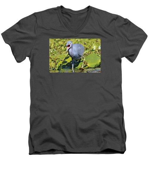 Fussy Little Blue Heron Men's V-Neck T-Shirt