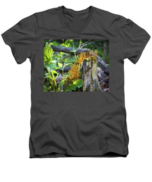 Men's V-Neck T-Shirt featuring the photograph Fuzzy Stump by Bill Pevlor