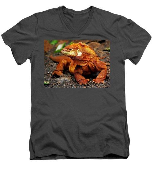 Galapagos Iguana Men's V-Neck T-Shirt by Rod Jellison