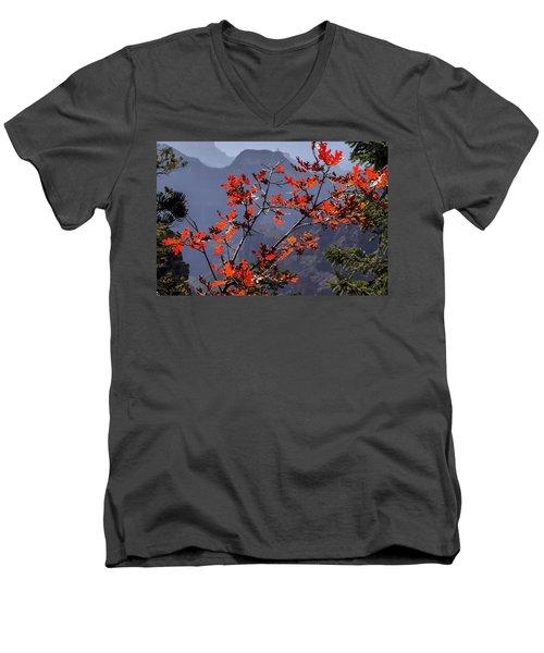 Gamble Oak In Crimson Fall Splendor Men's V-Neck T-Shirt