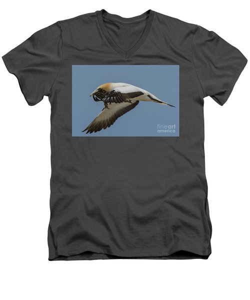 Men's V-Neck T-Shirt featuring the photograph Gannets 1 by Werner Padarin