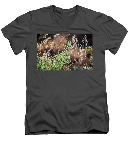 Garden Contre Jour 2 Men's V-Neck T-Shirt