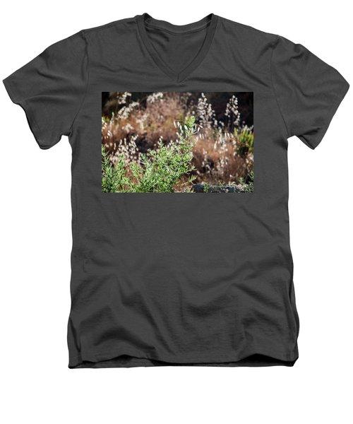 Garden Contre Jour 2 Men's V-Neck T-Shirt