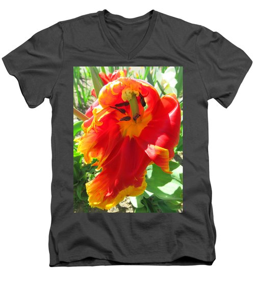 Garden Delight Men's V-Neck T-Shirt by Brooks Garten Hauschild