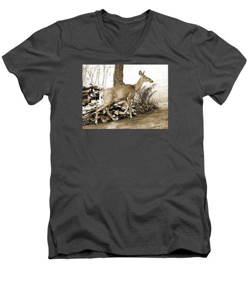 Garden Visitor Men's V-Neck T-Shirt by Betsy Zimmerli