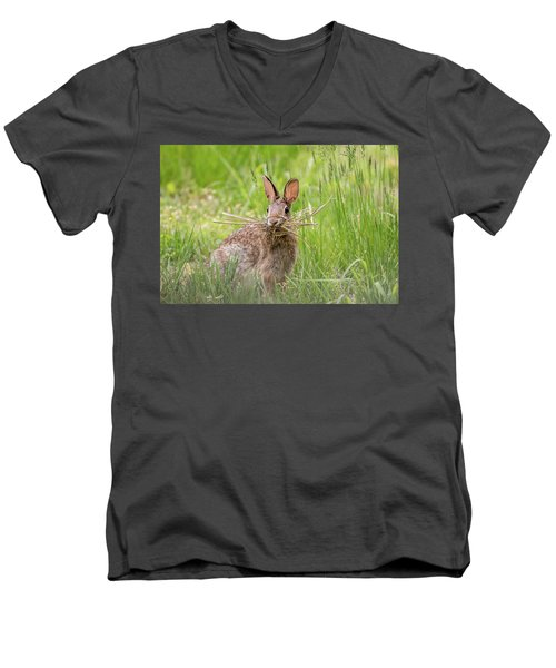 Gathering Rabbit Men's V-Neck T-Shirt by Terry DeLuco