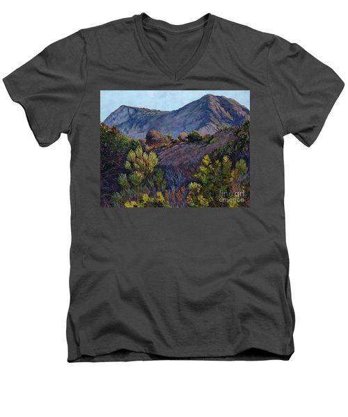Gaviota Afternoon Men's V-Neck T-Shirt